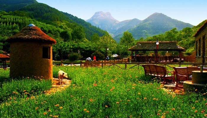 【免预约】泰和山风景区(黄花溪 天缘谷)